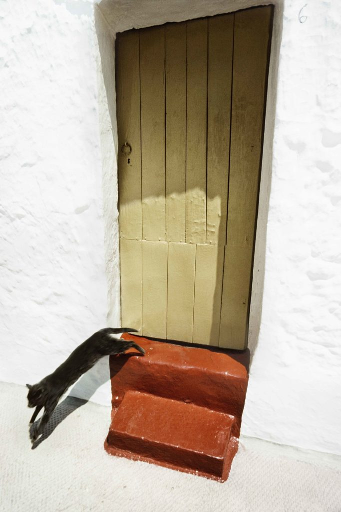 Ramon Masats VEGAP. Andalucia sf Cortesia Galeria Blanca Berlin 683x1024 1