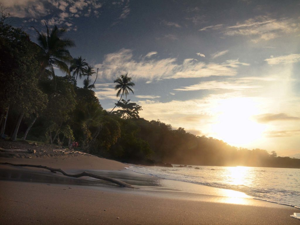 3 Bahía Drake Corcovado