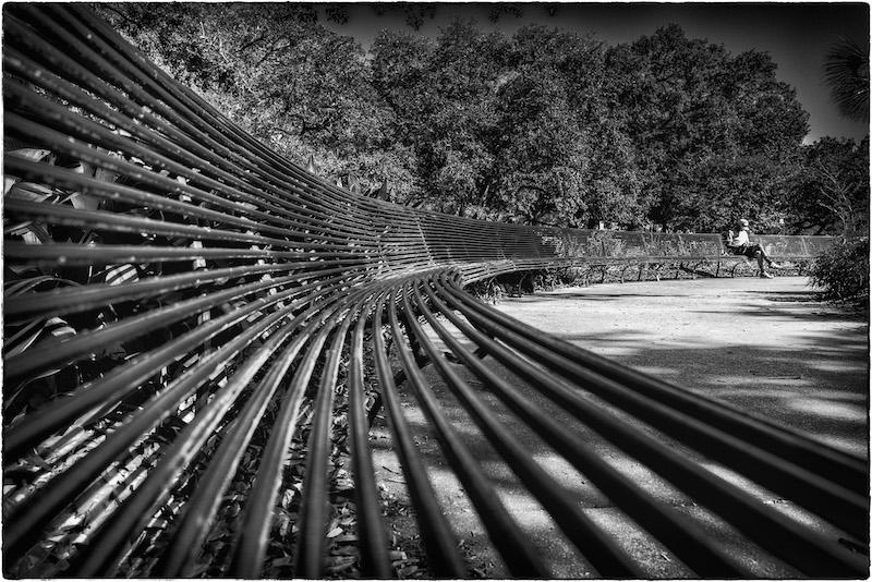 Audubon Park Bench New Orleans James Hayman