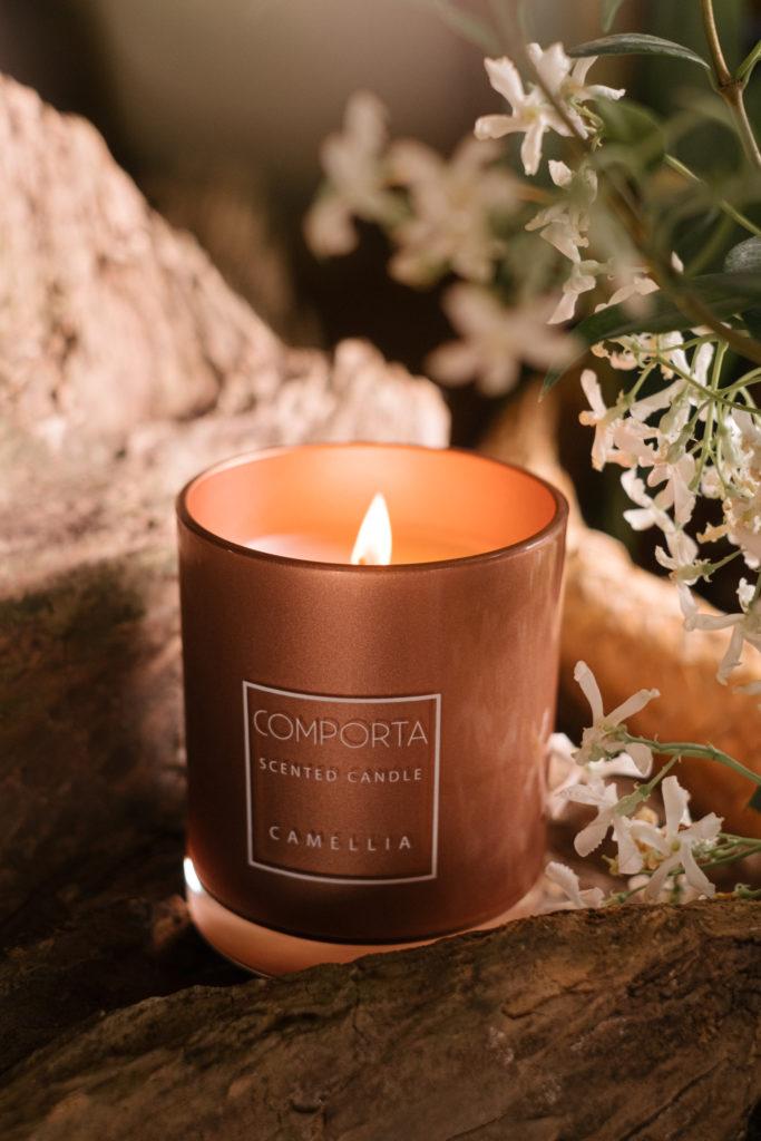 Comporta Fotografias camellia 6.JPG