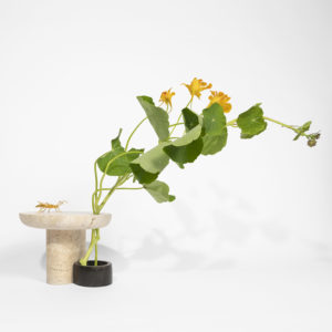 Sibylle T Capucine vase Flora x 1000 Vases DSCF1619