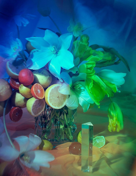 Flores. La Teoría del Color